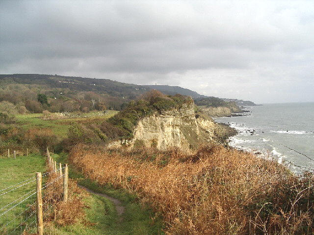 Coast south of Niton looking east